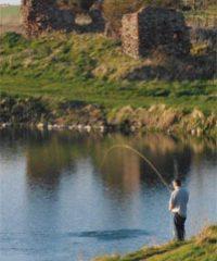 Markle Fisheries